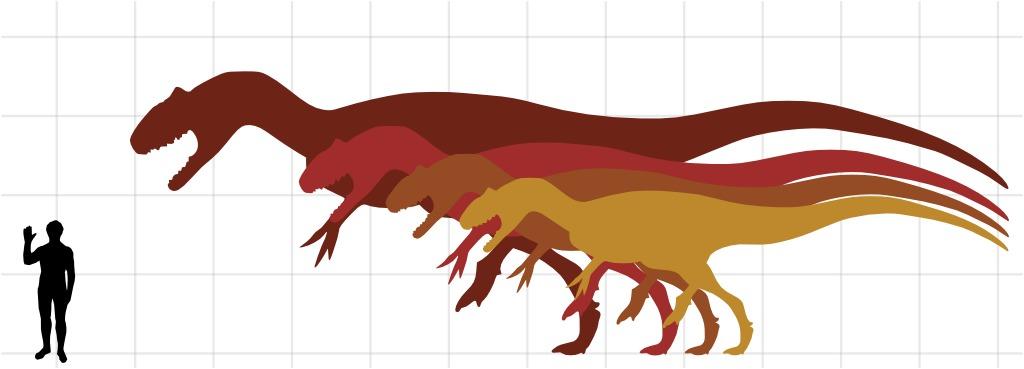 Ressources ducatives libres les - Liste des dinosaures carnivores ...