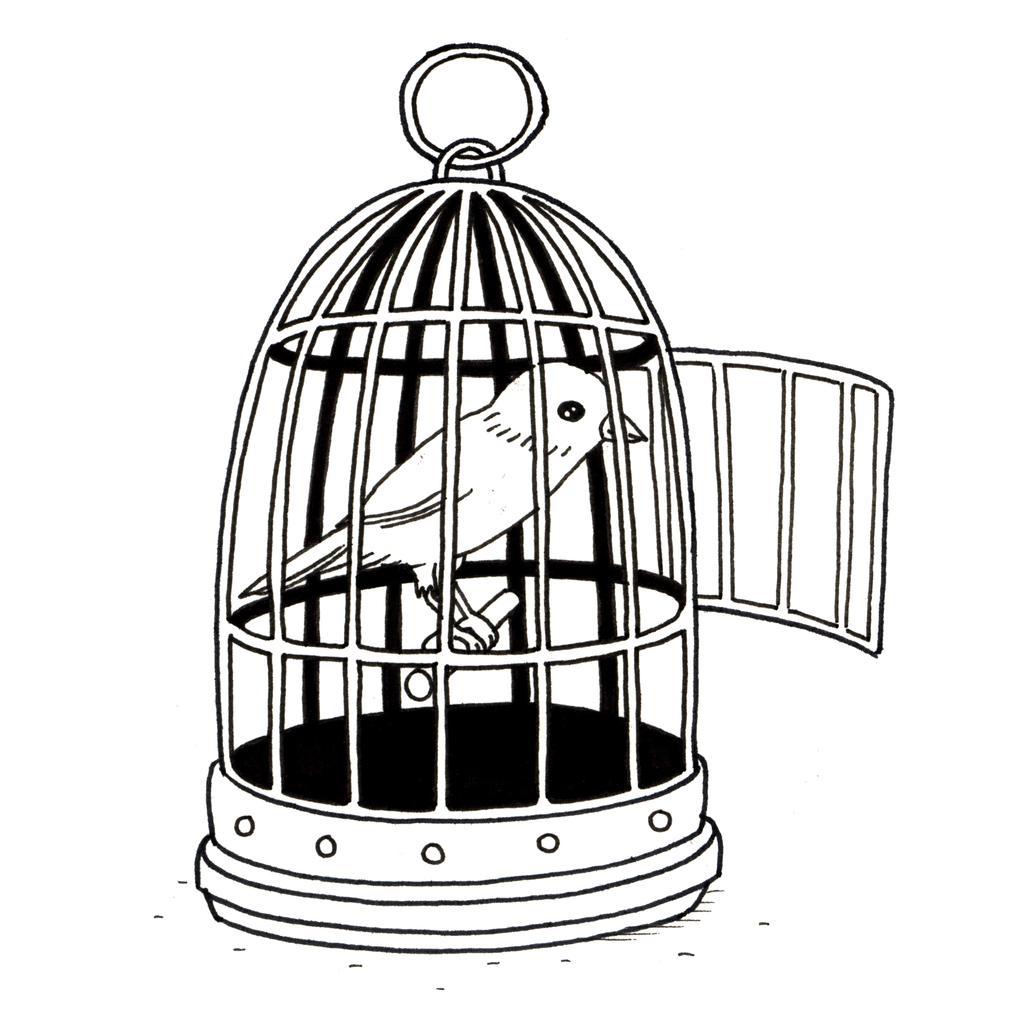 Ressources ducatives libres les ressources libres du projet abul du - Dessin oiseau en cage ...