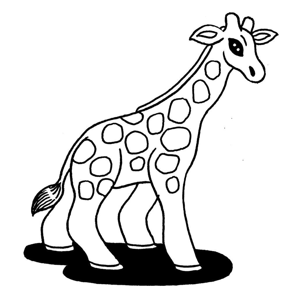 BFDX Mignon Animal Girafe Chapeaux Vari/ét/é Coupe-Vent /Écharpe T/ête Anti-Poussi/ère Protection Du Visage Deux-Face /Écharpe Blanc