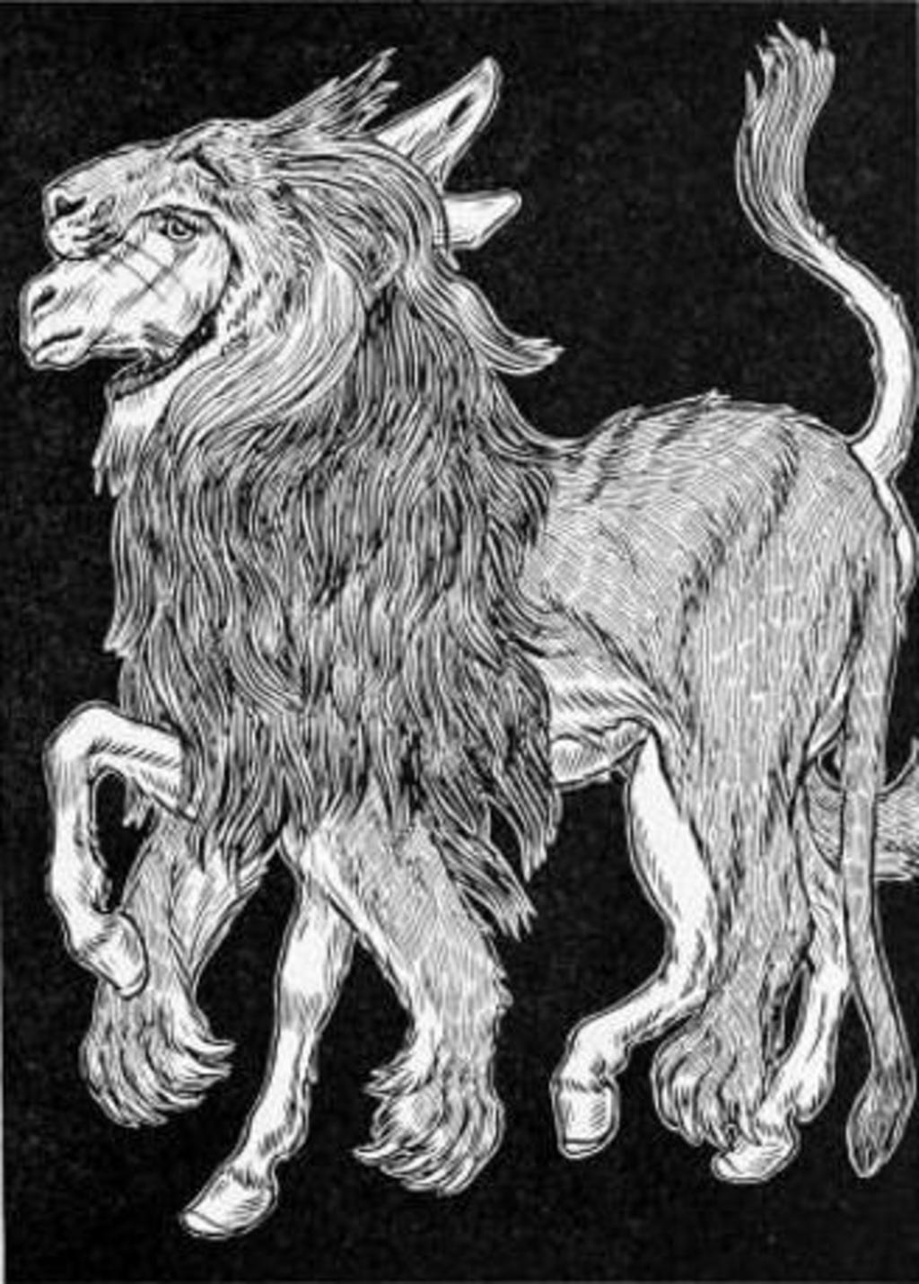 Bien-aimé l-ane-vetu-de-la-peau-du-lion-  GQ13