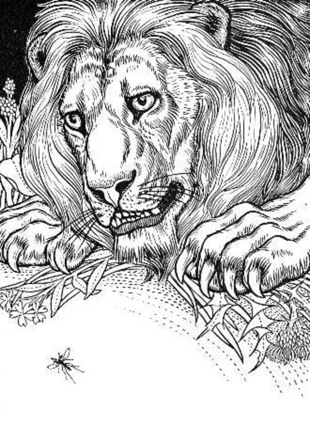 Extrêmement le-lion-et-le-moucheron-  UB02
