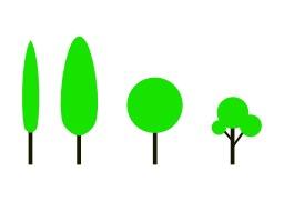 4 formes d'arbres. Source : http://data.abuledu.org/URI/5049a3a2-4-formes-d-arbres