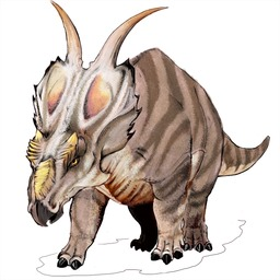 Achelousaurus. Source : http://data.abuledu.org/URI/52cf3c55-achelousaurus