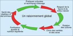 Agriculture raisonnée. Source : http://data.abuledu.org/URI/50ba56dc-agriculture-raisonnee