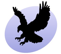 Aigle, serres ouvertes. Source : http://data.abuledu.org/URI/5049f766-aigle-serres-ouvertes