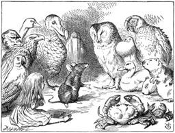 Alice et les animaux trempés. Source : http://data.abuledu.org/URI/50cf8a67-alice-et-les-animaux-trempes