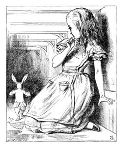Alice fait peur au lapin blanc. Source : http://data.abuledu.org/URI/50cf84fa-alice-fait-peur-au-lapin-blanc