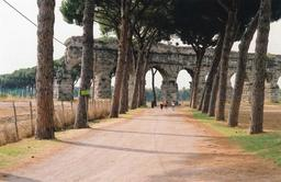 Allée de pins parasols à Rome. Source : http://data.abuledu.org/URI/539cb6f4-allee-de-pins-parasols-a-rome