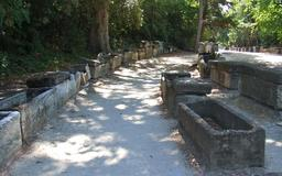 Allée des tombeaux d'Alyscamps. Source : http://data.abuledu.org/URI/52b813c6-allee-des-tombeaux-d-alyscamps
