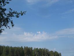 Altocumulus castellanus. Source : http://data.abuledu.org/URI/52337437-altocumulus-castellanus