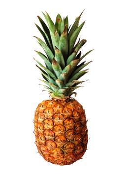 Ananas. Source : http://data.abuledu.org/URI/501bd2a4-ananas