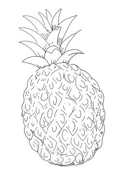 Ananas. Source : http://data.abuledu.org/URI/5024e7c3-ananas