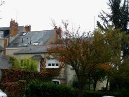 Angers, Couleurs d'automne dans les jardins. Source : http://data.abuledu.org/URI/562fda2a-angers-couleurs-d-automne-dans-les-jardins