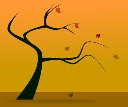 Arbre d'automne. Source : http://data.abuledu.org/URI/5049a2e6-arbre-d-automne