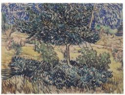 Arbre et arbustes dans le jardin de l'asile. Source : http://data.abuledu.org/URI/5514910f-arbre-et-arbustes-dans-le-jardin-de-l-asile