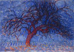 Arbre rouge en soirée. Source : http://data.abuledu.org/URI/54c4b2fa-arbre-rouge-en-soiree