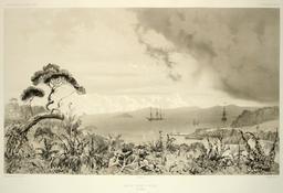 Archipel des Auckland. Source : http://data.abuledu.org/URI/59819c47-archipel-des-auckland