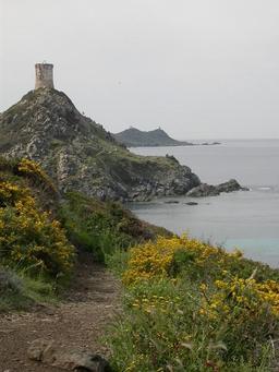 Archipel des Sanguinaires en Corse. Source : http://data.abuledu.org/URI/51cbea79-archipel-des-sanguinaires-en-corse