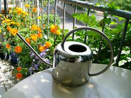 Arrosoir de terrasse en métal. Source : http://data.abuledu.org/URI/51d9a736-arrosoir-de-terrasse-en-metal