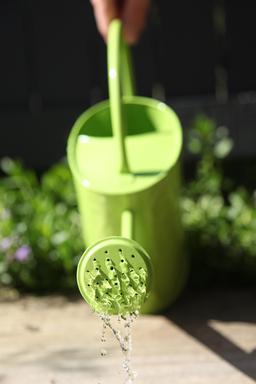 Arrosoir vert. Source : http://data.abuledu.org/URI/531331a8-arrosoir-vert