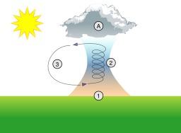 Ascendance thermique. Source : http://data.abuledu.org/URI/50b10e19-ascendance-thermique