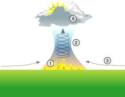 Ascendance thermique. Source : http://data.abuledu.org/URI/50b1109c-ascendance-thermique