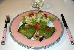 Assiette de chou farci. Source : http://data.abuledu.org/URI/548f7ada-assiette-de-chou-farci
