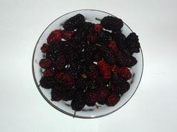 Assiette de mûres. Source : http://data.abuledu.org/URI/506e880f-assiette-de-mures