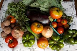Assortiment de légumes frais. Source : http://data.abuledu.org/URI/53333513-assortiment-de-legumes-frais