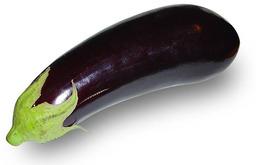 Aubergine. Source : http://data.abuledu.org/URI/501cf10c-aubergine