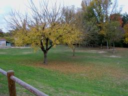 Automne en Lot-et-Garonne. Source : http://data.abuledu.org/URI/5827dfdb-automne-en-lot-et-garonne