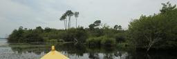 Balade en barque à Biscarrosse. Source : http://data.abuledu.org/URI/55abd8a4-balade-en-barque-a-biscarrosse
