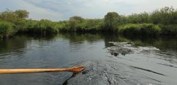 Balade en barque à Biscarrosse. Source : http://data.abuledu.org/URI/55abe2ea-balade-en-barque-a-biscarrosse
