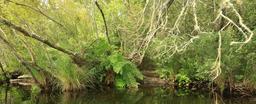 Balade en barque à Biscarrosse. Source : http://data.abuledu.org/URI/55abe337-balade-en-barque-a-biscarrosse