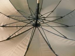 Baleines de parapluie ouvert. Source : http://data.abuledu.org/URI/539a1fb4-baleines-de-parapluie-ouvert