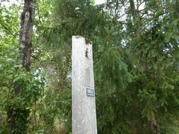 Balisage dans le parc du Bourgailh. Source : http://data.abuledu.org/URI/5826cc5d-balisage-dans-le-parc-du-bourgailh