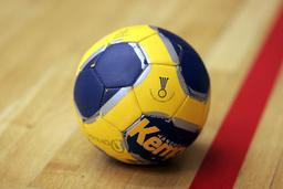 Ballon de hand-ball. Source : http://data.abuledu.org/URI/510a80c1-ballon-de-hand-ball