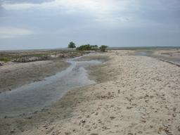Bancs de sable sur l'île de Carabane au Sénégal. Source : http://data.abuledu.org/URI/549363dd-bancs-de-sable-sur-l-ile-de-carabane-au-senegal