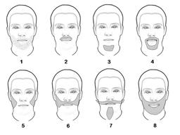 barbes et moustaches. Source : http://data.abuledu.org/URI/50293646-barbes-et-moustaches