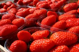 Barquettes de gariguettes. Source : http://data.abuledu.org/URI/534baa27-barquettes-de-gariguettes
