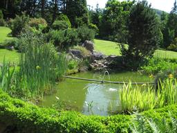Bassin de jardin. Source : http://data.abuledu.org/URI/53161086-bassin-de-jardin
