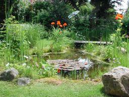 Bassin de jardin. Source : http://data.abuledu.org/URI/531612c9-bassin-de-jardin