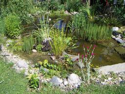 Bassin de jardin. Source : http://data.abuledu.org/URI/5316130f-bassin-de-jardin
