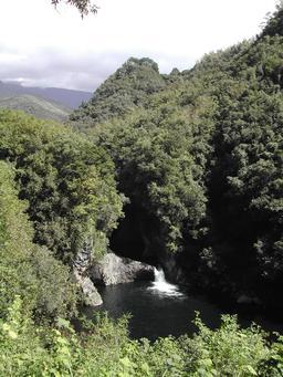 Bassin-des-hauts de la rivière des roches à La Réunion. Source : http://data.abuledu.org/URI/5276cae4-bassin-des-hauts-de-la-riviere-des-roches-a-la-reunion