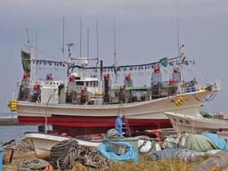 Bateau équipé pour la pêche au lamparo. Source : http://data.abuledu.org/URI/52cddb7f-bateau-equipe-pour-la-peche-au-lamparo