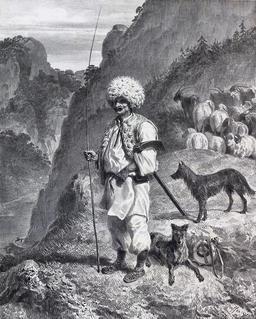 Berger hongrois du Banat. Source : http://data.abuledu.org/URI/50f1ec68-berger-hongrois-du-banat