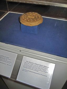 Biscuit de mer de 1852. Source : http://data.abuledu.org/URI/534bf3d7-biscuit-de-mer-de-1852