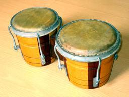 Bongo. Source : http://data.abuledu.org/URI/53072465-bongo