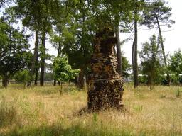 Borne de sauveté à Mimizan. Source : http://data.abuledu.org/URI/50466b8c-borne-de-sauvete-a-mimizan