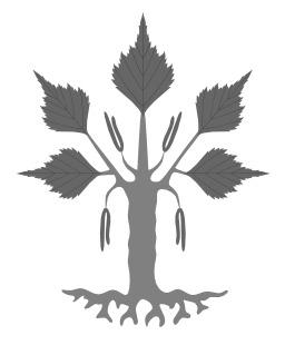Bouleau verruqueux en héraldique. Source : http://data.abuledu.org/URI/50bb89f1-bouleau-verruqueux-en-heraldique